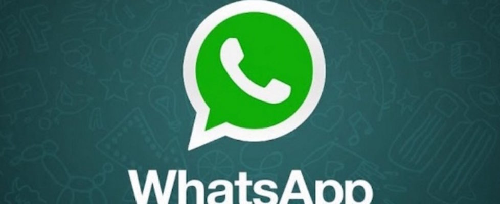 Block Unblock WhatsApp OCntacts