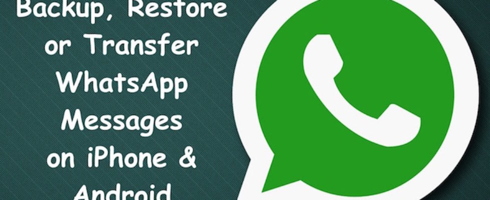 WhatsApp Message Backup and Restore
